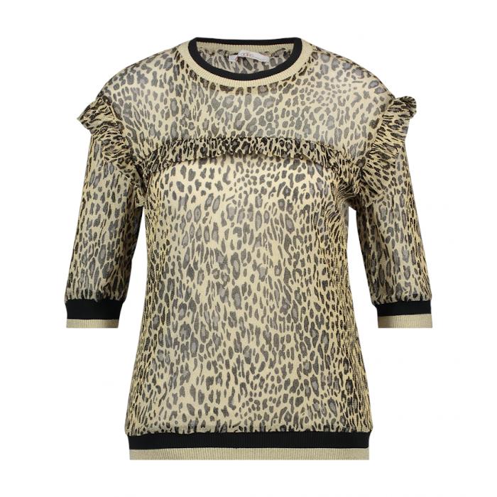 Smit Mode:  Aaiko t shirts INEA LEOPARD PA in het Geel