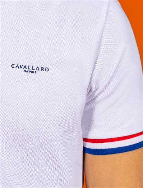Cavallaro polo's 116212009 in het Wit
