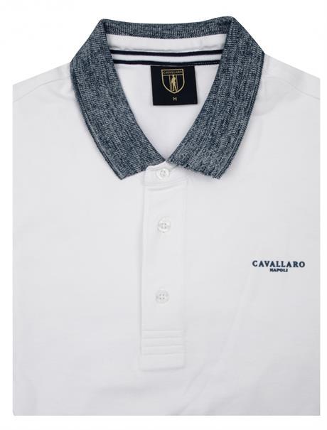Cavallaro polo's 1601009 in het Wit