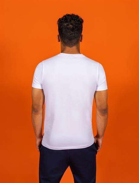 Cavallaro t-shirts 117212019 in het Wit