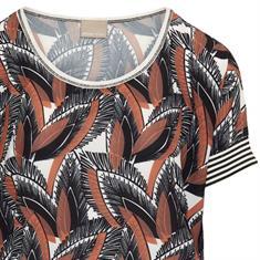 Dreamstar t-shirts 201cleo in het Bruin