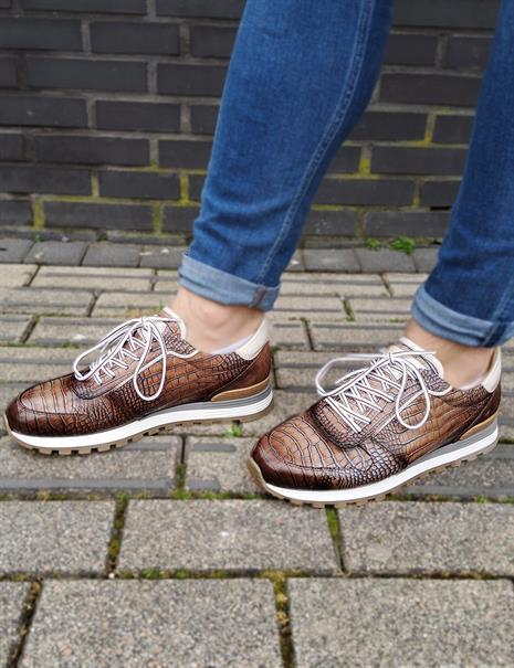 Giorgio sneakers 87520-cerbi in het Bruin