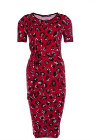 Juffrouw Jansen jurk kaat-s20 in het Rood