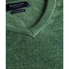 Profuomo trui PP0J00225 in het Groen
