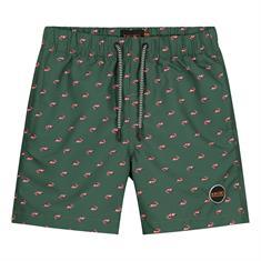 Shiwi shorts 4102-111-193 in het Groen