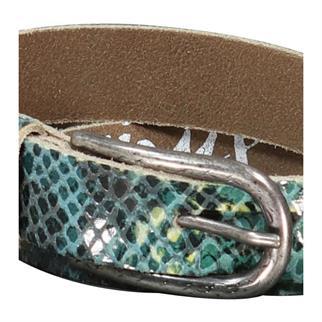 Smit Mode accessoire eeske-snake in het Groen