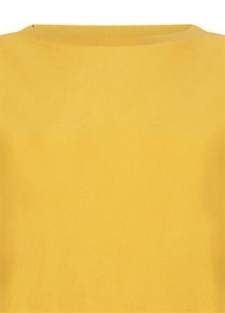 Tramontana trui Q23-99-602 in het Geel